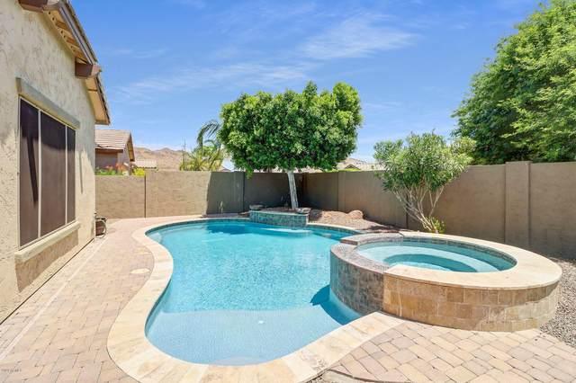 5547 W Buckhorn Trail, Phoenix, AZ 85083 (MLS #6091447) :: REMAX Professionals