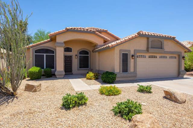 12413 W Windsor Avenue, Avondale, AZ 85392 (MLS #6091471) :: Brett Tanner Home Selling Team