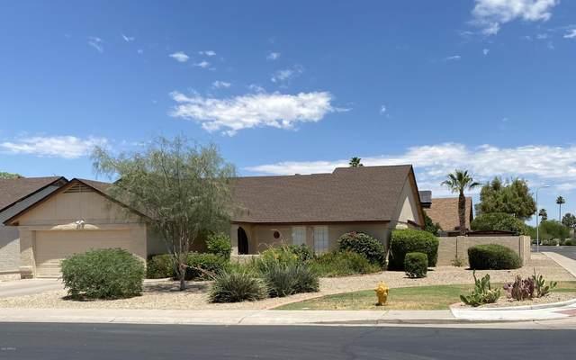 3604 W Laredo Street, Chandler, AZ 85226 (MLS #6091626) :: Lucido Agency