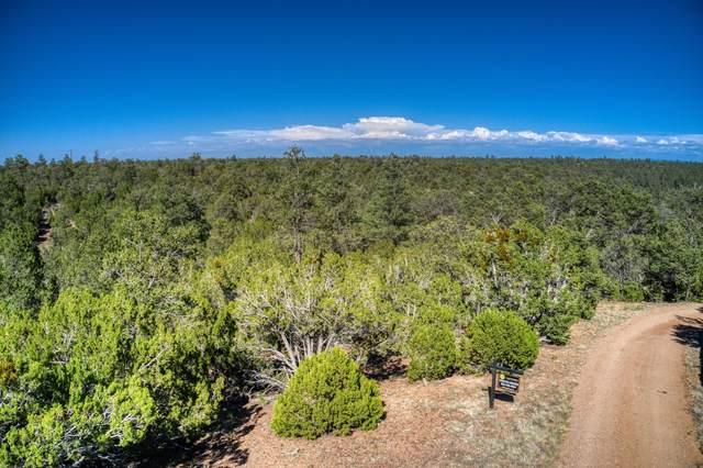 3319 Tall Tree Lane, Overgaard, AZ 85933 (MLS #6091708) :: Devor Real Estate Associates
