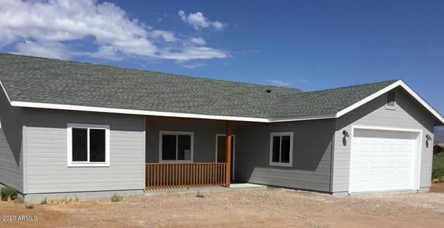 390 Ewing Trail, Tonto Basin, AZ 85553 (MLS #6091752) :: The Daniel Montez Real Estate Group