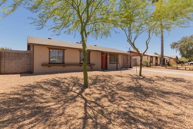 3649 E Pershing Avenue, Phoenix, AZ 85032 (MLS #6091761) :: The Laughton Team