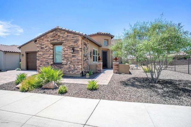 13193 W Nadine Way, Peoria, AZ 85383 (MLS #6091813) :: neXGen Real Estate