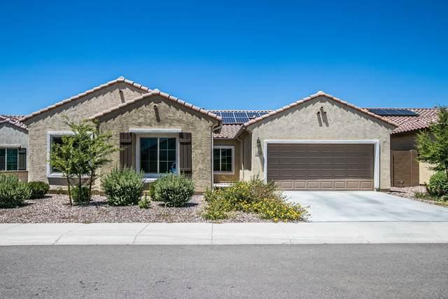 7010 W Springfield Way, Florence, AZ 85132 (MLS #6091912) :: Lucido Agency