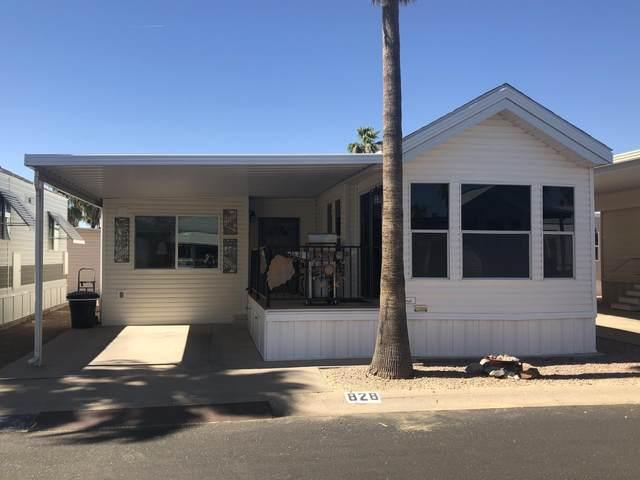 828 S Beryl Drive, Apache Junction, AZ 85119 (MLS #6091959) :: My Home Group