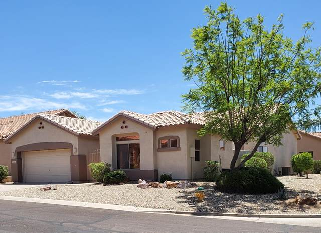 5361 S Joshua Tree Court, Gold Canyon, AZ 85118 (MLS #6092025) :: Klaus Team Real Estate Solutions