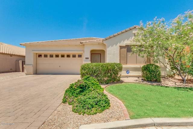 1939 N Maria Avenue, Casa Grande, AZ 85122 (MLS #6092068) :: Long Realty West Valley