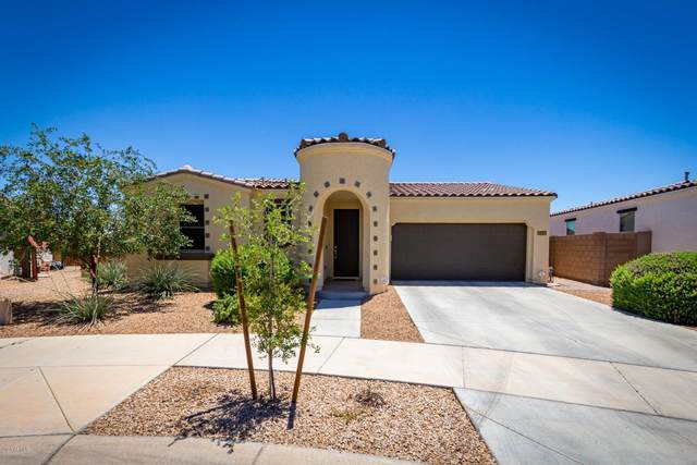22677 E Desert Spoon Drive, Queen Creek, AZ 85142 (MLS #6092113) :: The Laughton Team