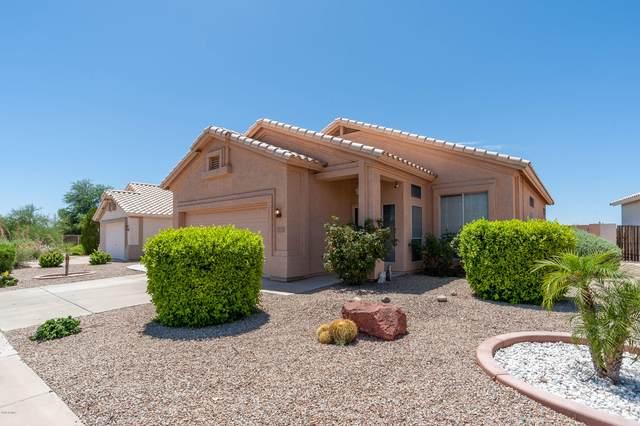 18324 N Coyote Lakes Parkway, Surprise, AZ 85378 (MLS #6092117) :: Brett Tanner Home Selling Team