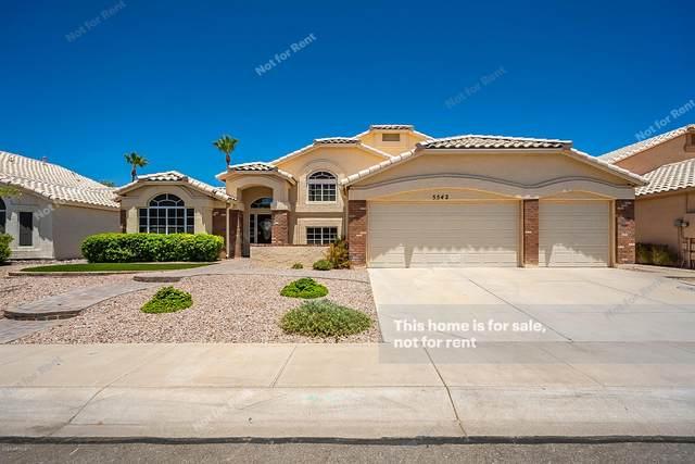 5542 W Ross Drive, Chandler, AZ 85226 (MLS #6092148) :: Lucido Agency