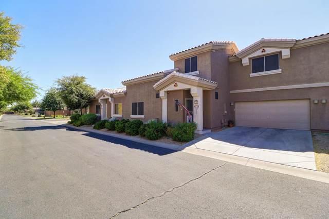 15668 N 79TH Drive, Peoria, AZ 85382 (MLS #6092168) :: BIG Helper Realty Group at EXP Realty