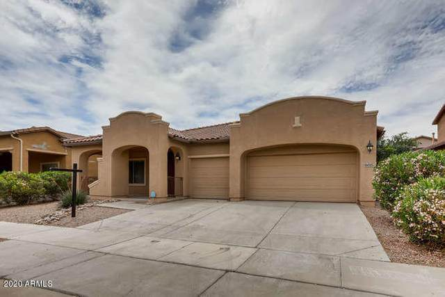 16015 W Christy Drive, Surprise, AZ 85379 (MLS #6092212) :: Yost Realty Group at RE/MAX Casa Grande
