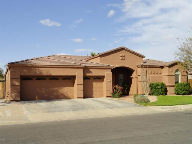 2146 E Buena Vista Drive, Chandler, AZ 85249 (MLS #6092281) :: Scott Gaertner Group