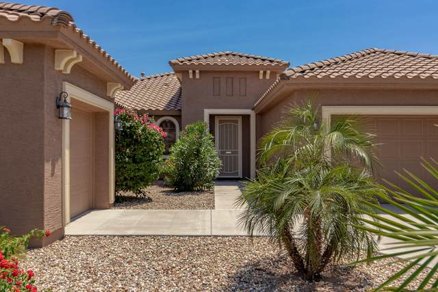 15329 W Montecito Avenue, Goodyear, AZ 85395 (MLS #6092282) :: Keller Williams Realty Phoenix