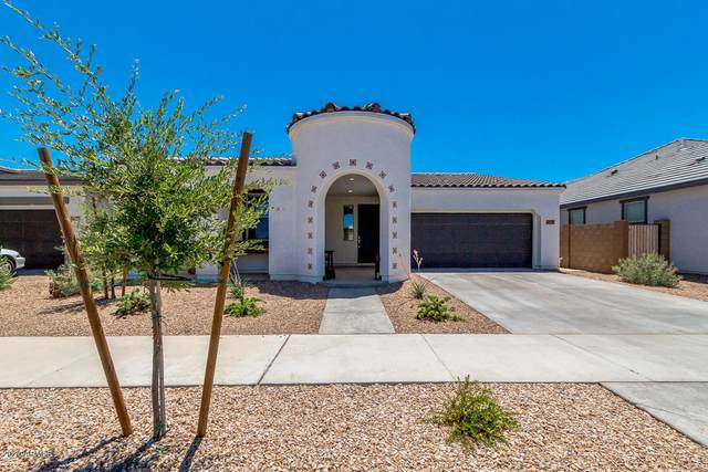 22529 E Via Las Brisas, Queen Creek, AZ 85142 (MLS #6092303) :: The Laughton Team