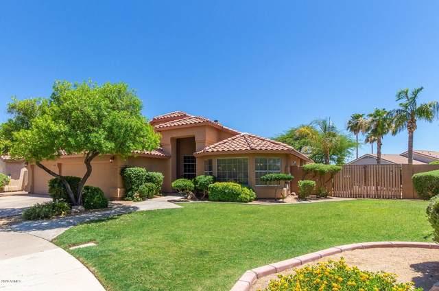 1201 E Sea Breeze Drive, Gilbert, AZ 85234 (MLS #6092307) :: Relevate | Phoenix