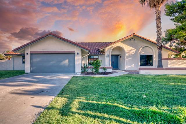 4345 E Carol Ann Lane, Phoenix, AZ 85032 (#6092341) :: The Josh Berkley Team