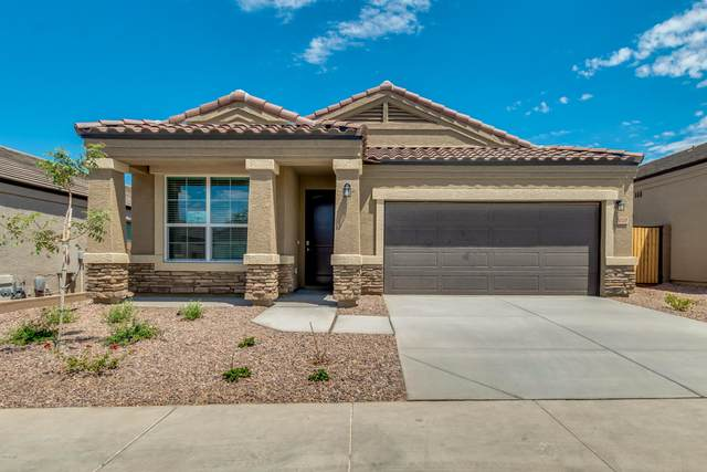 2010 W Yellowbird Lane, Phoenix, AZ 85085 (MLS #6092435) :: The Laughton Team