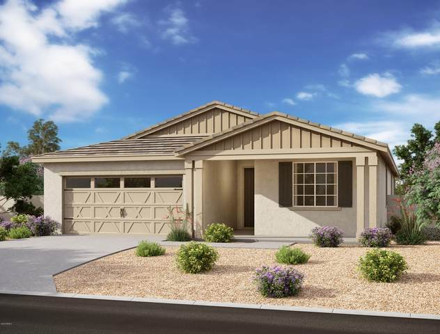 667 W Lowell Drive, San Tan Valley, AZ 85140 (MLS #6092969) :: Arizona Home Group