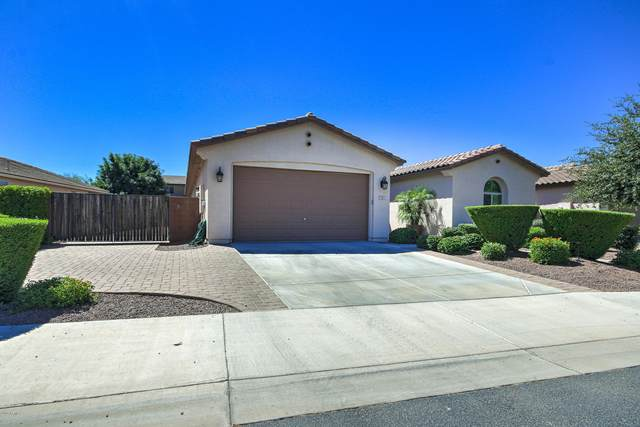 341 W Leatherwood Avenue, San Tan Valley, AZ 85140 (MLS #6093006) :: The Laughton Team