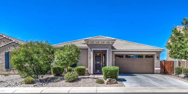 2920 E Meadowview Drive, Gilbert, AZ 85298 (MLS #6093016) :: Long Realty West Valley