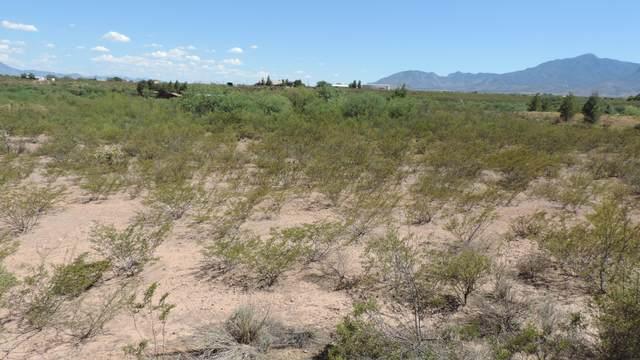 TBD Garden Canyon Road, Sierra Vista, AZ 85650 (#6093076) :: The Josh Berkley Team