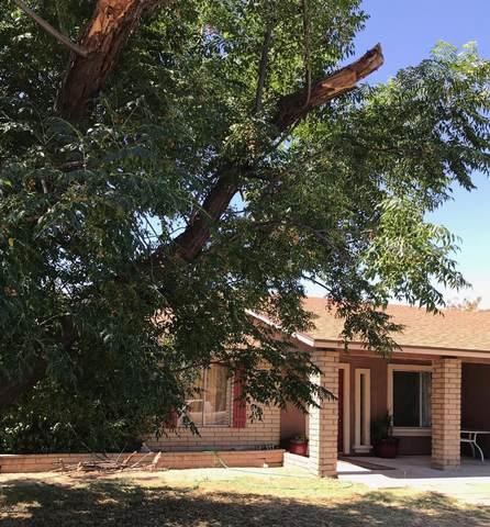 6607 W Highland Avenue, Phoenix, AZ 85033 (MLS #6093129) :: Brett Tanner Home Selling Team