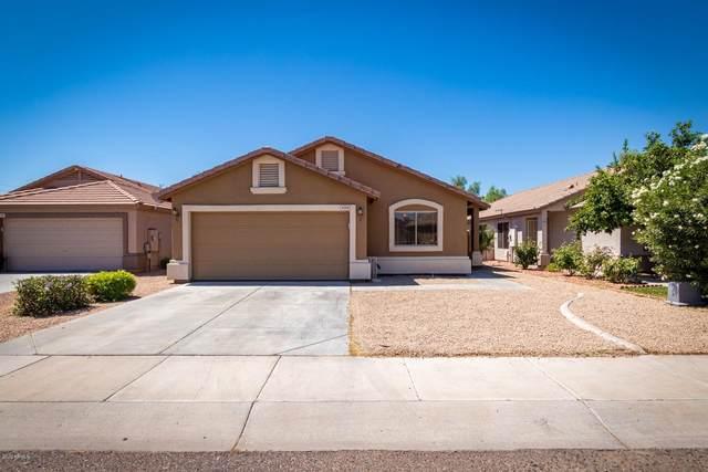6709 W Nicolet Avenue, Glendale, AZ 85303 (MLS #6093215) :: Yost Realty Group at RE/MAX Casa Grande