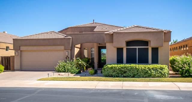 8479 E Krail Street, Scottsdale, AZ 85250 (MLS #6093232) :: My Home Group