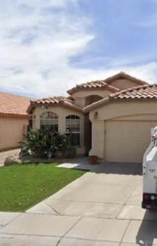 2215 E Donald Drive, Phoenix, AZ 85024 (MLS #6093261) :: Lux Home Group at  Keller Williams Realty Phoenix
