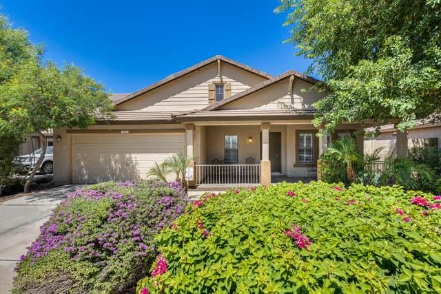1510 S 115TH Drive, Avondale, AZ 85323 (MLS #6093339) :: The Luna Team