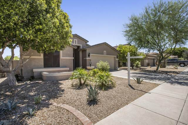 1721 W Nighthawk Way, Phoenix, AZ 85045 (MLS #6093346) :: Homehelper Consultants