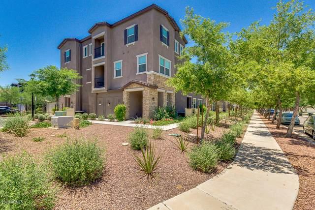 2356 E Hidalgo Avenue, Phoenix, AZ 85040 (MLS #6093354) :: Brett Tanner Home Selling Team