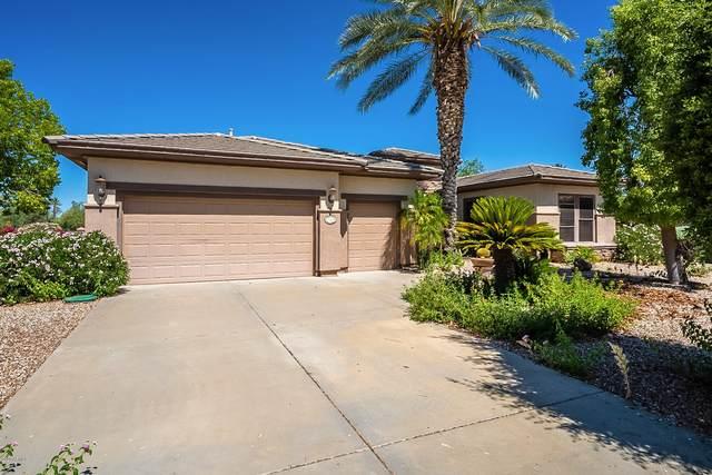 16905 W Artesia Drive, Surprise, AZ 85387 (MLS #6093375) :: Midland Real Estate Alliance