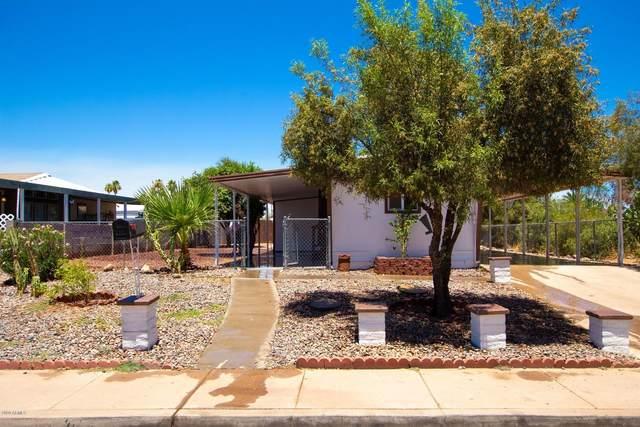 315 S Winterhaven, Mesa, AZ 85204 (MLS #6093393) :: The Bill and Cindy Flowers Team