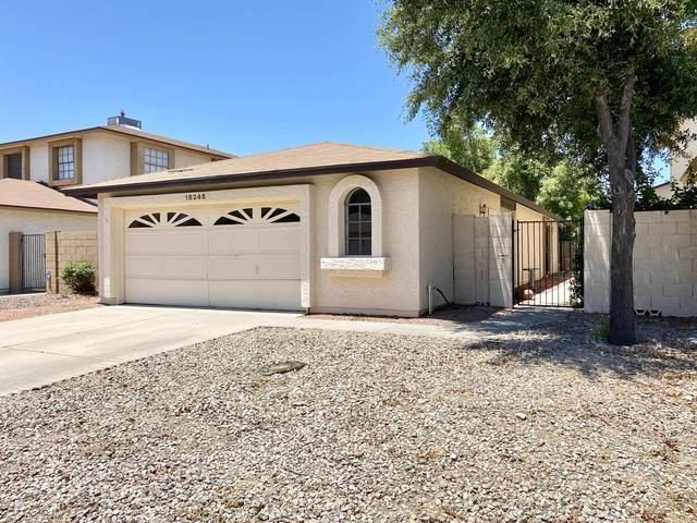 18248 N 37TH Avenue, Glendale, AZ 85308 (MLS #6093469) :: The Luna Team