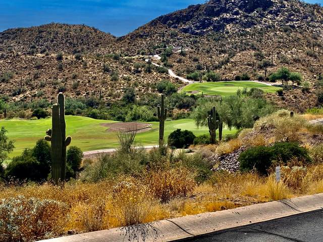 9163 E Avenida Fiebre De Oro Street, Gold Canyon, AZ 85118 (MLS #6093502) :: Long Realty West Valley
