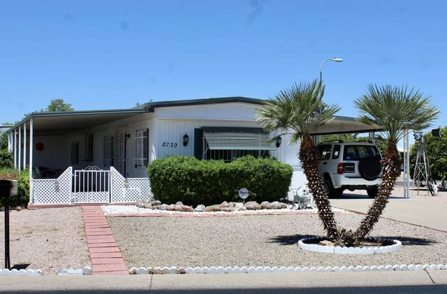 8730 E Delilah Avenue, Mesa, AZ 85208 (MLS #6093544) :: Brett Tanner Home Selling Team