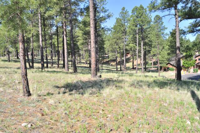 3425 S Las Colinas Court, Flagstaff, AZ 86005 (MLS #6093551) :: Long Realty West Valley