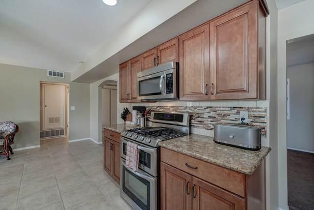 10902 W Greer Avenue, Sun City, AZ 85351 (MLS #6093570) :: Keller Williams Realty Phoenix