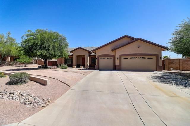 13019 W Tuckey Court, Glendale, AZ 85307 (MLS #6093614) :: Brett Tanner Home Selling Team