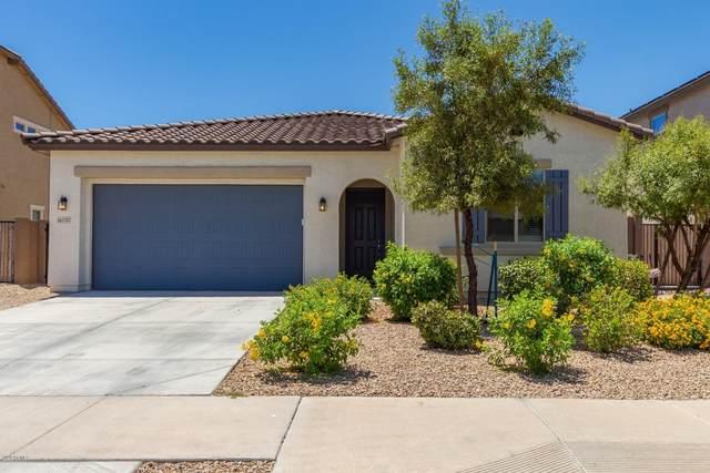 16737 W Monroe Street, Goodyear, AZ 85338 (MLS #6093681) :: Nate Martinez Team