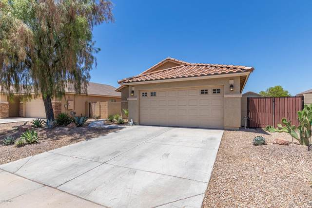 16594 W Desert Bloom Street, Goodyear, AZ 85338 (MLS #6093725) :: Devor Real Estate Associates