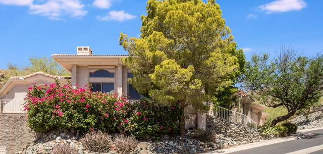 11 W Cheryl Drive, Phoenix, AZ 85021 (MLS #6093729) :: Brett Tanner Home Selling Team