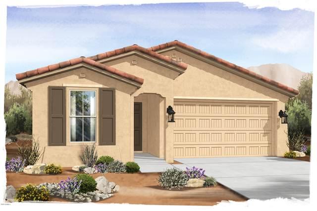 18757 W Colter Street, Litchfield Park, AZ 85340 (MLS #6093750) :: The Laughton Team