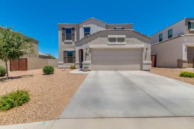 33047 N Ash Tree Lane, Queen Creek, AZ 85142 (MLS #6093751) :: Conway Real Estate
