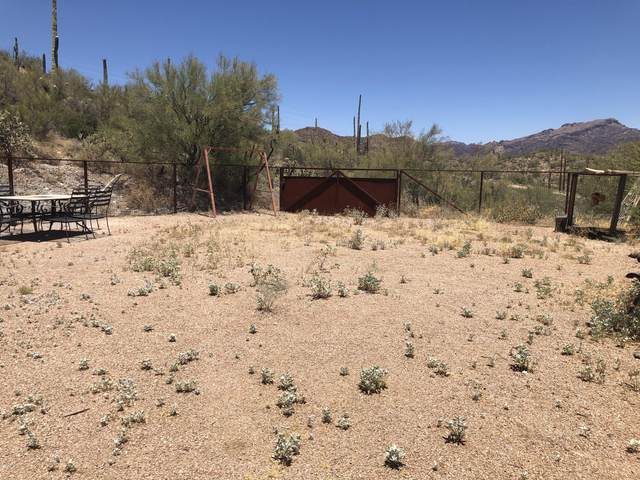 3376 N Elephant Butte Road, Queen Valley, AZ 85118 (MLS #6093756) :: The Results Group