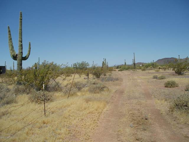 29913 W Olesen Road, Unincorporated County, AZ 85361 (MLS #6093864) :: The W Group