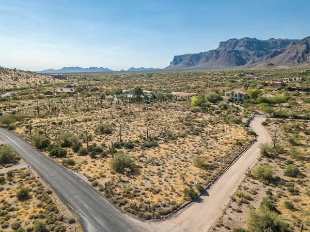 3200 S Mohican Road, Gold Canyon, AZ 85118 (MLS #6094008) :: The Riddle Group
