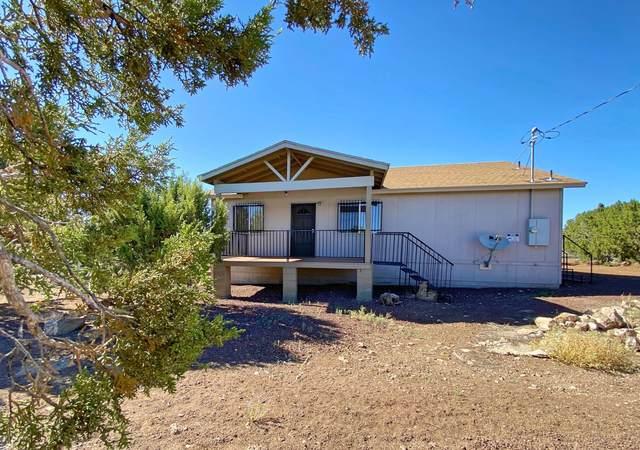 93 N County Road N8165, Vernon, AZ 85940 (MLS #6094152) :: Yost Realty Group at RE/MAX Casa Grande